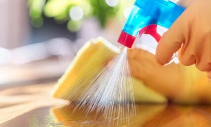 How to Sanitize Your Living Area Instantly?